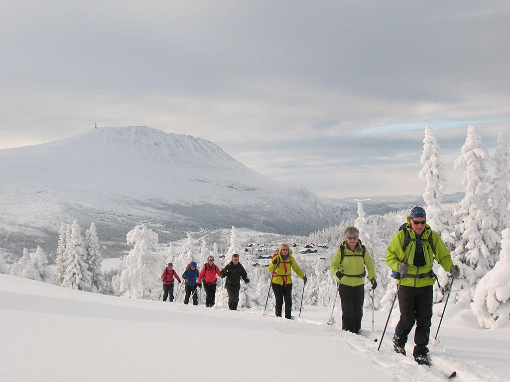 Kvitåvatn Fjellstue | Winter